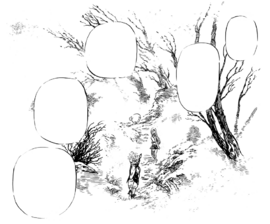 Forest of White Dreams manga