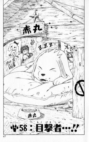 Chapter 058