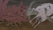 Gyuki punches Kokuo.png