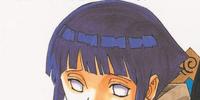 Neji dan Hinata (volume)