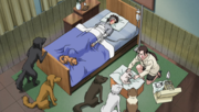 Hana treating Kiba and Akamaru