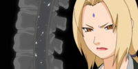 Tsunade's Warning: Ninja No More!