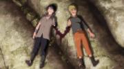 Naruto & Sasuke Wounded