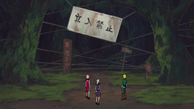 File:Jofuku forest.png