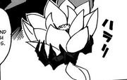 Lotusfruit