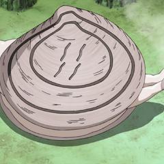 Džinovska školjka