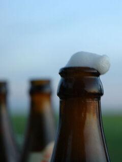 450px-Bottled-beer-foam