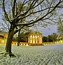 Lovia - Thomas Jefferson Park - Lawn