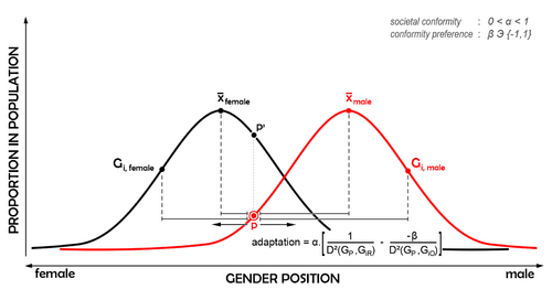 Gender-directing theory