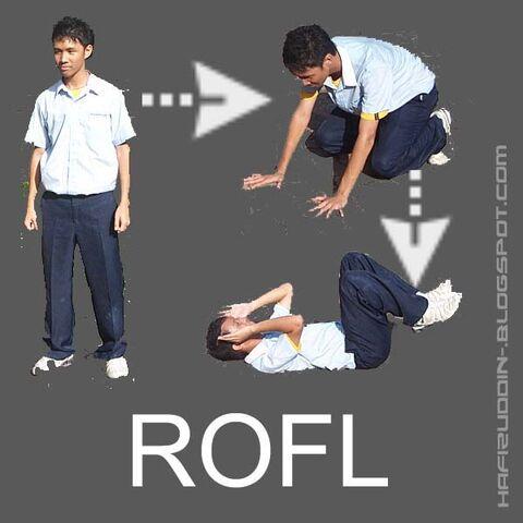 File:Rofl1y3sn.jpg