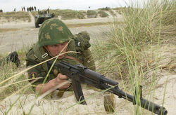 Erusea naval infantry