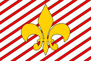 Illinascopi Flag