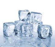 Ice cub