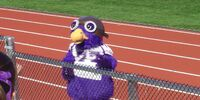 Ace the Skyhawk