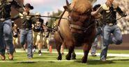 NCAA-Football-12-Road-to-Glory