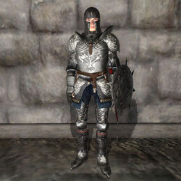 Destruction Armor Male