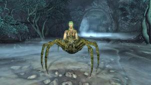Spider Sprigan
