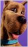 Banner-PT4-ScoobyDoo