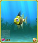 Yellow Pajama Fish