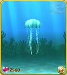 Light Blue Jellyfish