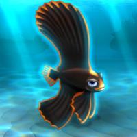 File:FISHR Orange Dusky Batfish.png