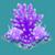 COR Purple Bonsai Acropora Coral
