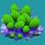 COR Green Bubble Coral