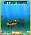 Orange Vampire Crab
