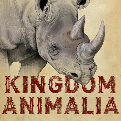 File:Kingdom-animalia.png