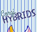 Corgi Hybrids