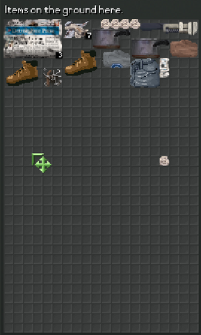 File:Items on the ground.png