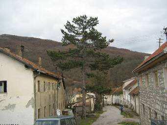 File:Ulica uloška.jpg