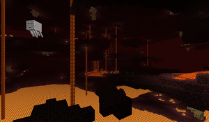 Nether 'biome'