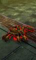 Spider Deathjump Spider.jpg
