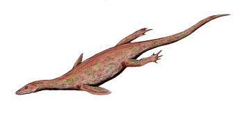File:350px-Lariosaurus BW.jpg