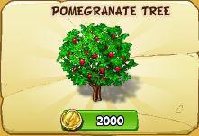 File:Pomegranite.JPG