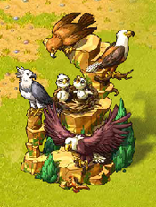 EagleRockReward