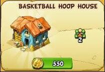 Basketball hoop house new