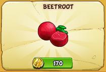 Beetroot new