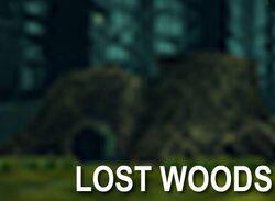 LostWood