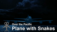Plane with Snakes