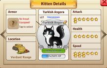 VD-TurkishAngora