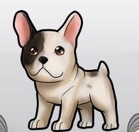 FrenchBulldog