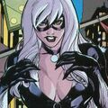 SlideShow Heroes Black Cat.JPG