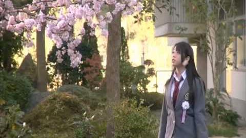 AKB48 Sakura no Hanabiratachi 2008 PV-0