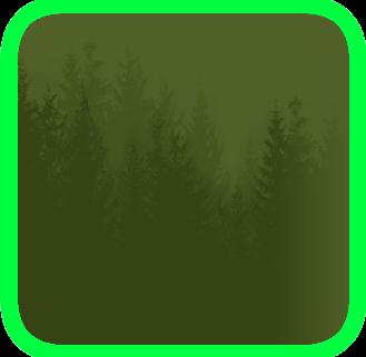 File:Forest bg.png