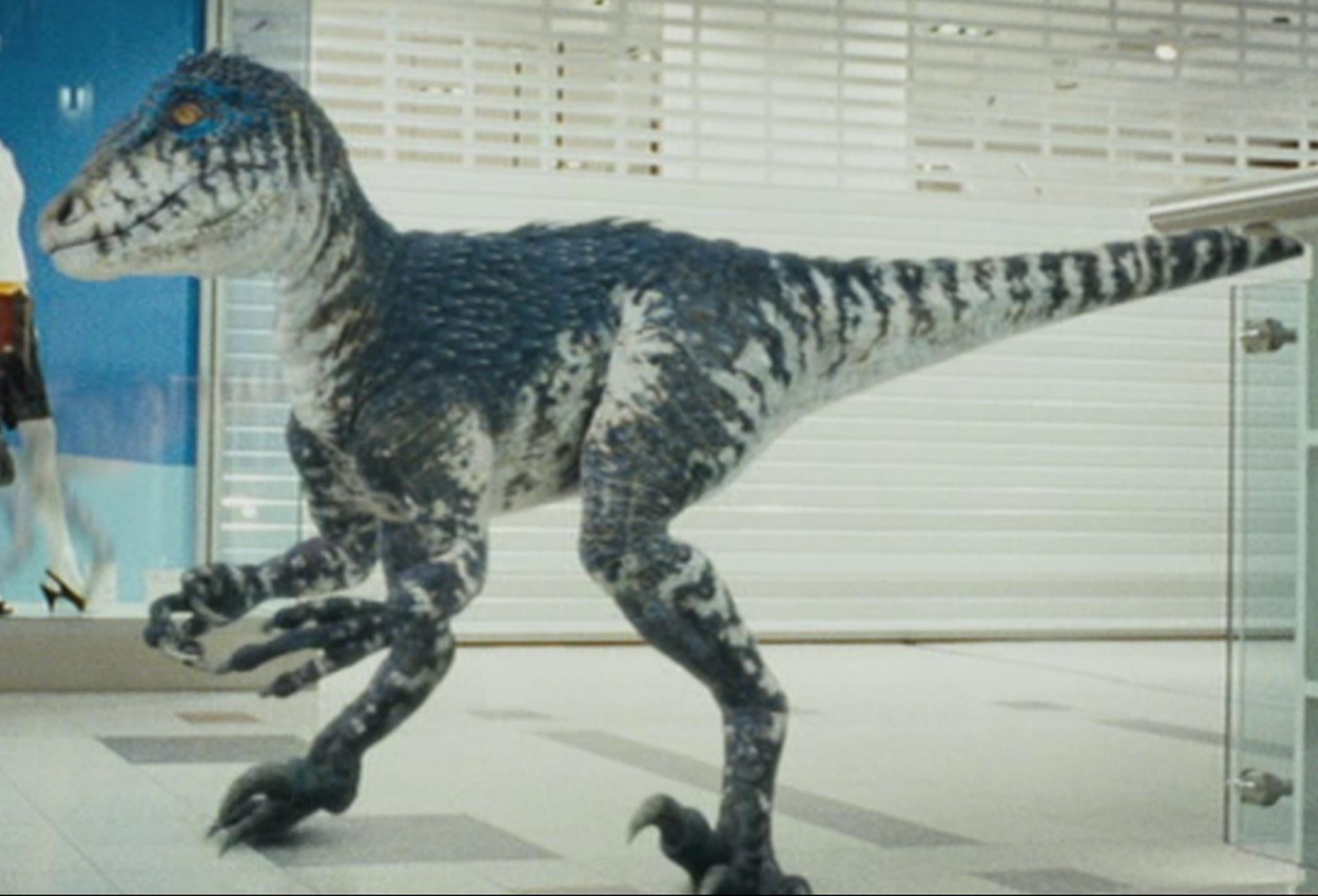 Raptor primeval wiki nick cutter et les portes du - Harry potter 8 et les portes du temps ...