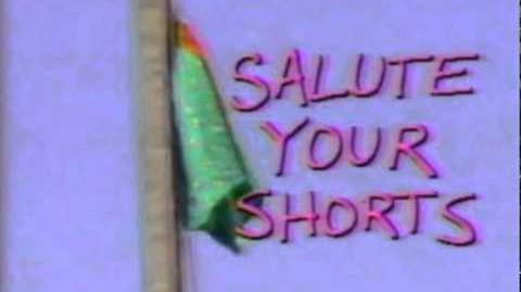 Salute Your Shorts Music Theme Song Season 1