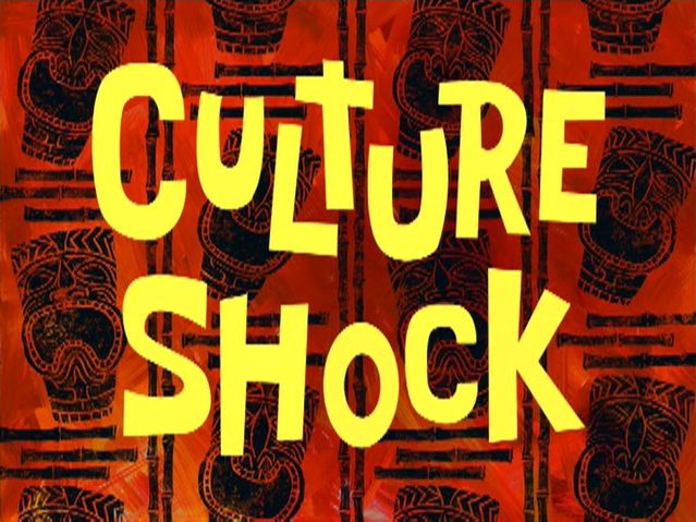 File:Culture Shock.jpg