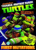 TMNT Season 1 UK DVD